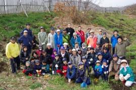 2013年砂丘林再生プロジェクト
