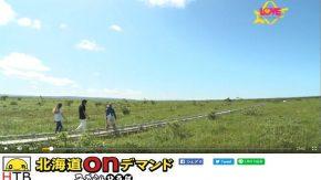 北海道テレビ「LOVE HOKKAIDO」の放送をオンデマンドでご覧になれます