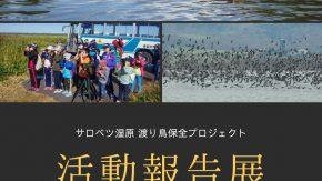 【案内】サロベツ湿原渡り鳥保全プロジェクト活動報告展のお知らせ