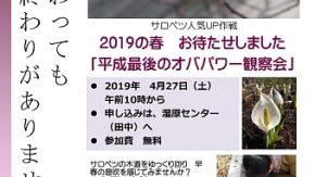 【日程変更】4/27→4/28 10:00オバパワー倶楽部さんによる観察会