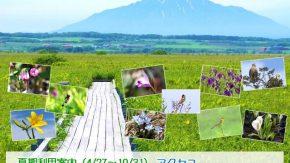 【お知らせ】サロベツ湿原センター夏期開館スケジュールのご案内!