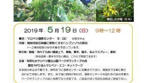 【案内】5/19(日)外来種除去イベントが開催されます。