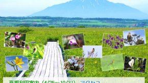 【お知らせ】 4/25(土)~サロベツ湿原センターは9:00~17:00開館となります!