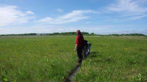 サロベツ湿原バックヤードツアー、好評開催中です!