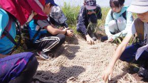 【報告】サロベツ湿原自然再生子どもエコツアー