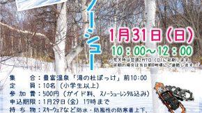 【案内】1/31(日)豊富温泉・冬の森スノーシューハイクを開催します!