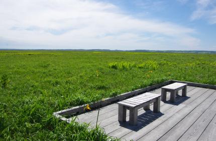 木道自然ガイドのイメージ