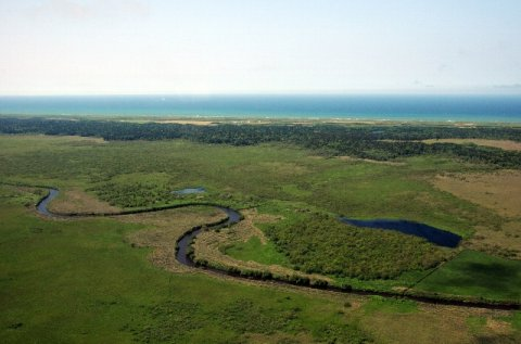 サロベツ湿原センターのサイトがリニューアル