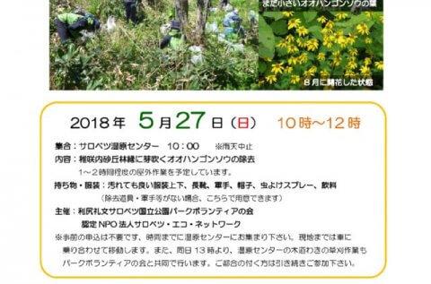 【案内】5/27(日)外来種除去イベントが開催されます