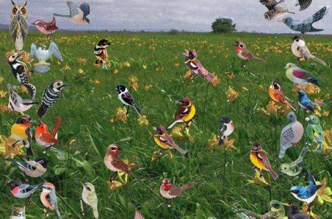 鳥類のブローチ展示会を開催中です