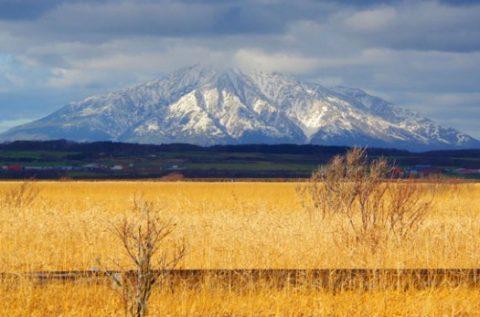 雪が降りてきた利尻山