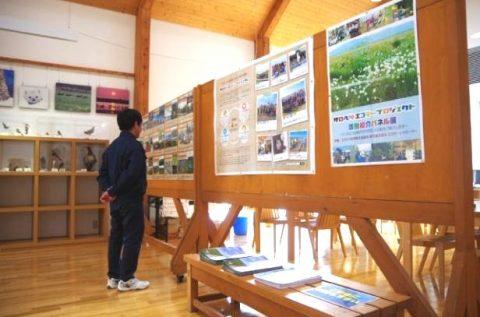 湿原センターにてエコモー紹介展を実施中です!!