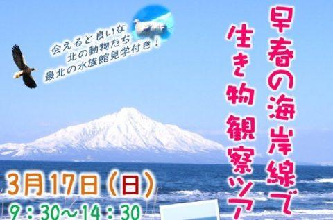 【案内】3/17(日)早春の海岸線で生き物観察ツアーを開催します!