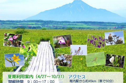 【お知らせ】夏期開館スケジュールのご案内!