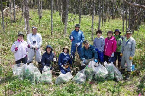 【報告】5/19(日)外来種除去イベントが開催されました!