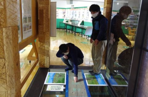 【開催中!!】サロベツエコモーDay~これまでの歩み展~&自然再生クイズラリー(11/14~12/1)